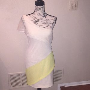BCBG generation size 4 dress ivory with pale green